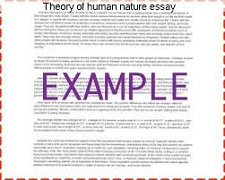 theory of human nature essay essay service theory of human nature essay