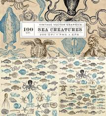 sea monster illustration. Beautiful Sea Antique Sea Monsters And Creatures Creatures Illustrations To Sea Monster Illustration