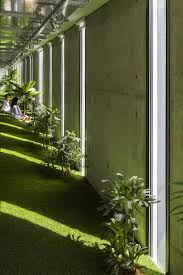 green office. Plants Have Been Placed According To The Existing Window Positions For Receiving Sunlight Green Office