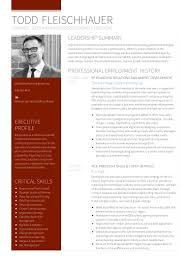 todd fleischhauer resume strategic s and business development e