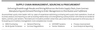 Supply Chain Analyst Procurement Specialist Profile It Tech Exec