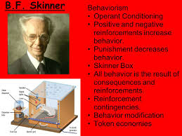 operant conditioning essay bf skinner research paper home