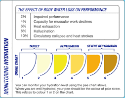 Body Hydration Level Chart Hydration Requirements Swimmers Nutrition