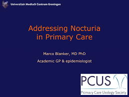 Baus Frequency Volume Chart Addressing Nocturia In Primary Care