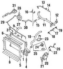 similiar 06 325i belt diagram keywords 2000 bmw 323ci engine diagram ci car wiring diagram pictures database