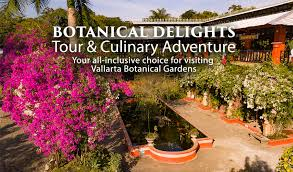 vallarta botanical gardens the leaflet authentic mexican cuisine catering more