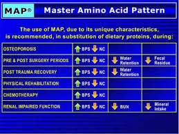 Master Amino Acid Pattern Inspiration Master Amino Acid Pattern MAP Presentation Part 48 YouTube