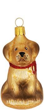 Gablonzer Goldiger Hund