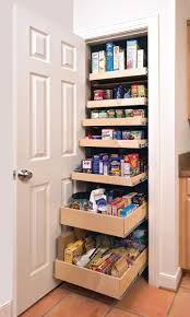 Space Saving Shelves Furniture Fancy Pull Out Spice Rack Kitchen Pantry Cabinet With