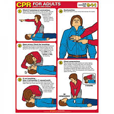 Cpr Chart Laminated Poster With Eyelets Adult