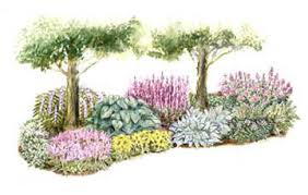 Small Picture Shade Garden Plans The Gardens