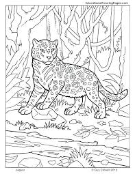Camouflage Coloring Pages Free Animal On Coloring Pages Christmas