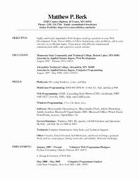 Simple Resume Template Simple Resume Template Awesome Resume Examples Resume Templates 54