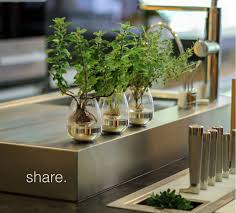 indoor kitchen garden. Similar To Hydroponic Gardening, The Fogponic \u201cplug-and-play\u201d Growing System Automatically Distributes Nutrients And Water As A Fog Or Mist Rather Than Indoor Kitchen Garden E