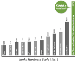 Janka Hardness Scale Fossilized The Worlds Hardest Floors
