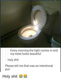 Bathroom Puns Impressive Every Morning The Light Comes In And My Toilet Looks Beautiful Holy