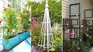 garden obelisk trellis. Garden Trellis Projects Pictures . Obelisk E