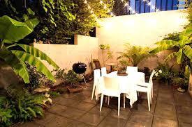 patio palm tree palm tree solar lights landscape lighting fl landscaping with patio palm tree care