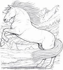 Cavallo Da Colorare Per Bambini 50 Disegni Da Colorare Di Cavalli