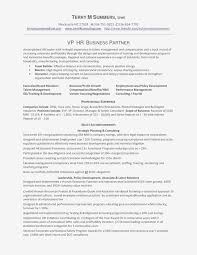 Data Analyst Resume Template Examples Bud Analyst Resume Lovely