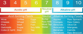 Alkaline Ph Level Chart Alkaline Water Kleenatap