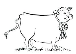 Cow Colouring Pages Christmas For Kindergarten Coloring Minecraft