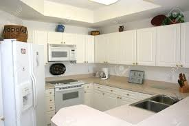 New Wooden Kitchen Cabinets In Light Tones With White Appliances - White modern kitchen