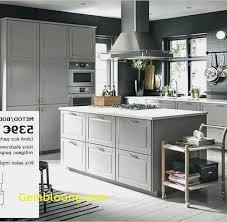 Cuisine Complete Avec Electromenager Ikea At Génial Luxe élégant Le