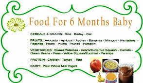 Best Food For 6 Month Baby