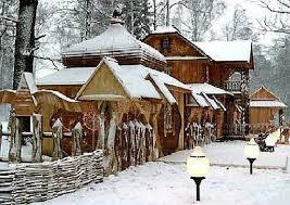 Картинки по запросу беловежская пуща зимой