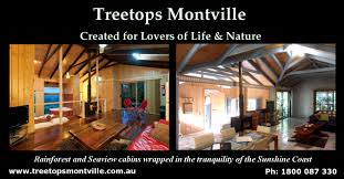 Travel Archives  Xonox LabsTreehouse Montville