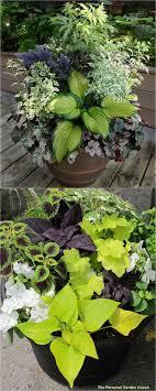 Small Space Gardening  Big Container Garden IdeasContainer Garden Ideas For Shade