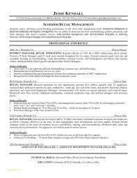 Sample Resume For Retail Merchandiser With Retail Management Resume