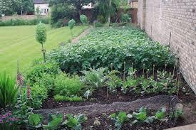 N Planning A Vegetable Garden
