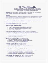 Sharepoint Trainer Sample Resume