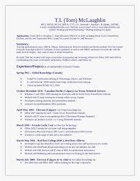 Sharepoint Trainer Sample Resume