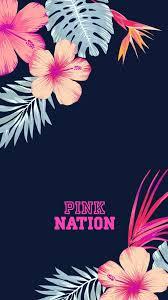 pink nation wallpapers on wallpaperdog