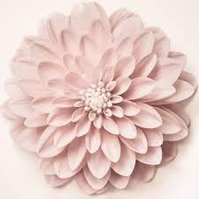 blush pink flower wall art