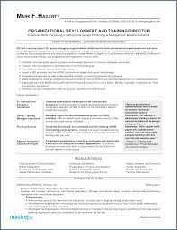 Volunteer Work On Resume Example Extraordinary Volunteer Work On Resume Example Volunteer Work Resume Example Best