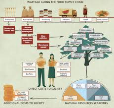 Food Waste Chart Food Waste Causes Effects And Solutions Farm Together