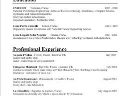Bricklayer Job Description Resume Magnificent Bricklaying Resume Template Images Documentation 20