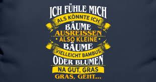 Spruch Motivation Lustig Sarkasmus Humor Geschenk Kissenhülle