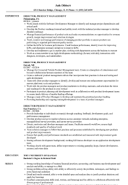 Product Management Resume Director Product Management Resume Samples Velvet Jobs 19