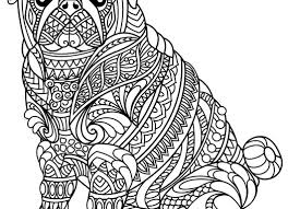 Literarywondrous Forest Animals Coloring Pages Woodland Rainforest
