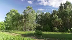 landscape free 4k landscape scene 2trackroad free stock footage youtube