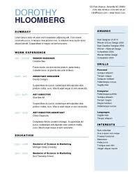 Word Resume Template Two Column