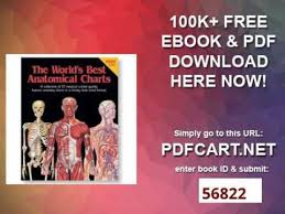World S Best Anatomical Charts The Worlds Best Anatomical Charts Worlds Best Anatomical