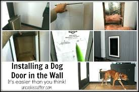 installing a dog door doggy in glass install pet wall