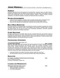 Resume Professional Summary Nice Examples Career Change Resumes