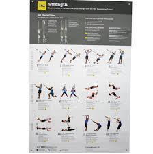 Trx Body Strength Posters V2